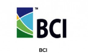 Section_5_Logo-14-BCI-1-300x250