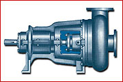 03 EHS-EVHS PUMPS